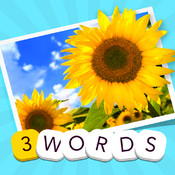 3 Words: Summer – find the three secret words in one summery picture