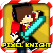 Pixel Dungeon Knight Hero - Valley of the Wizard 3D Multiplayer and Survival Mine Mini Game