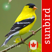 Bird Song Id Canada Automatic Recognition and Reference of Songs and Calls of Canadian Birds early bird