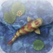 Koi pond app for ipad iphone entertainment app by the for Koi pond size requirements