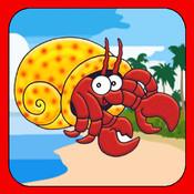 A Pet Hermit Crab