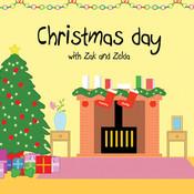 Zak & Zelda - Christmas ds lite zelda