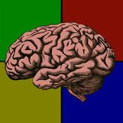 Brainable
