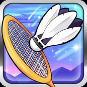 Badminton pro