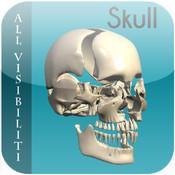 All Visibiliti Skull