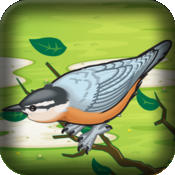Mad Birds War: Air Domination - Flying and Shooting Game mad birds pursuit