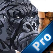 Gorilla Ruin Temple Pro : Survival Brave Rescue