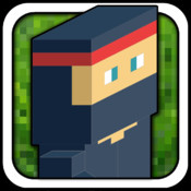 A Block Ninja - Temple Escape Adventure Game HD Free