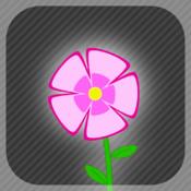 Send a flower