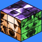 Dogs Rubix Cube