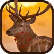 Jungle Safari Deer Hunter 2015 Challenge