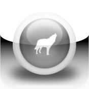 Pet Lover`s Wolf News Reader