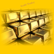Gold App proshow gold 4 0