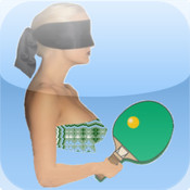 Blindfold Ping Pong