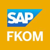 SAP FKOM sap data migration