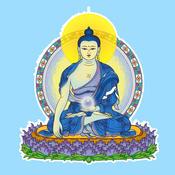 Learning Buddha