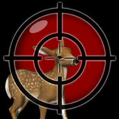 Clear Vision Deer Shooting