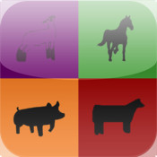 Willoughby Livestock and Horse Sales