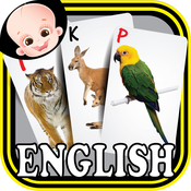 Baby Animals & Birds ABC Alphabets Flas Cards