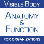 Anatomy & Function for Organizations