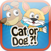 Cat or Dog ?!