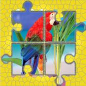 Birds : Jigsaw World