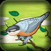 Mad Birds Revenge Pro: Air Domination Wars Flying and Shooting Game