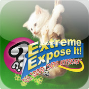 Extreme Expose It! Oh Sooo Cute Kittens!