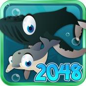 Ocean Pet 2048 Craze - Awesome Math Puzzle Saga