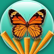 Jungle Escape - Through The Jungle Butterflies Free