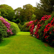 Yard and Garden Design Ideas - Images Of Yards and Beautiful Garden Landscaping, Design Ideas