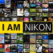 Nikon Art nikon d80 sale