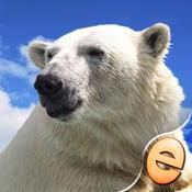 Jigsaw Wonder Polar Bear Puzzles for Kids Free