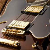 Simple Guitar Lessons for Absolute Beginners major