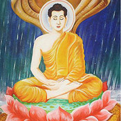 Truyện Thơ Tiền Thân Đức Phật - Truyện Phật Giáo