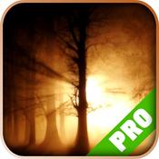 Pro Game - Slender: The Arrival - Game Guide Version slender