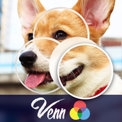 Venn Dogs: Overlapping Jigsaw Puzzles