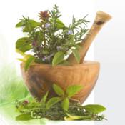 Herbs Encyclopaedia !!