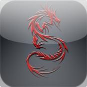 Dragons 101