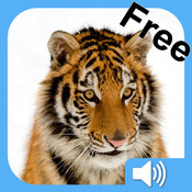 Baby Flashcards - Free: Animals