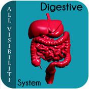 All Visibiliti Digestive System