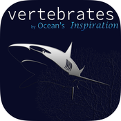 Vertebrates, by Reef Life