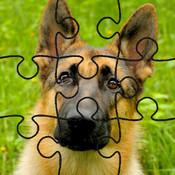 Dog Puzzles! kids online puzzles