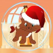 Christmas Kittens free kittens in minnesota