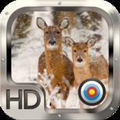 Deer Hunter Crossing Gold Pro