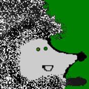 Heads Up Hedgehog Workout Run