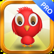 Bird Strategy Game Pro-Jumping Strategy
