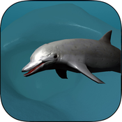 Real Dolphin coral reef simulator