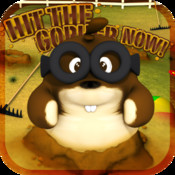 Hit The Gopher Now!