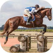 Learn How To Horse-Back Riding - Best Stallion Riding Experience Guide For Advanced & Beginners sears riding mower parts